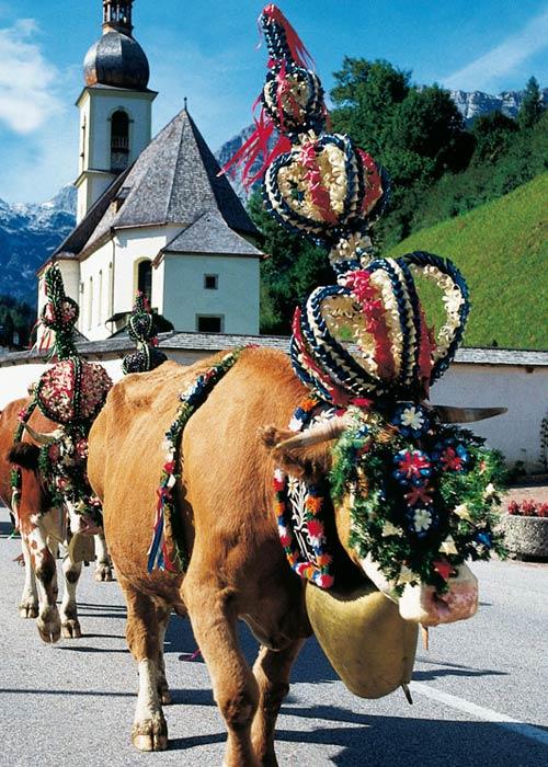Almbetrieb in Berchtesgaden